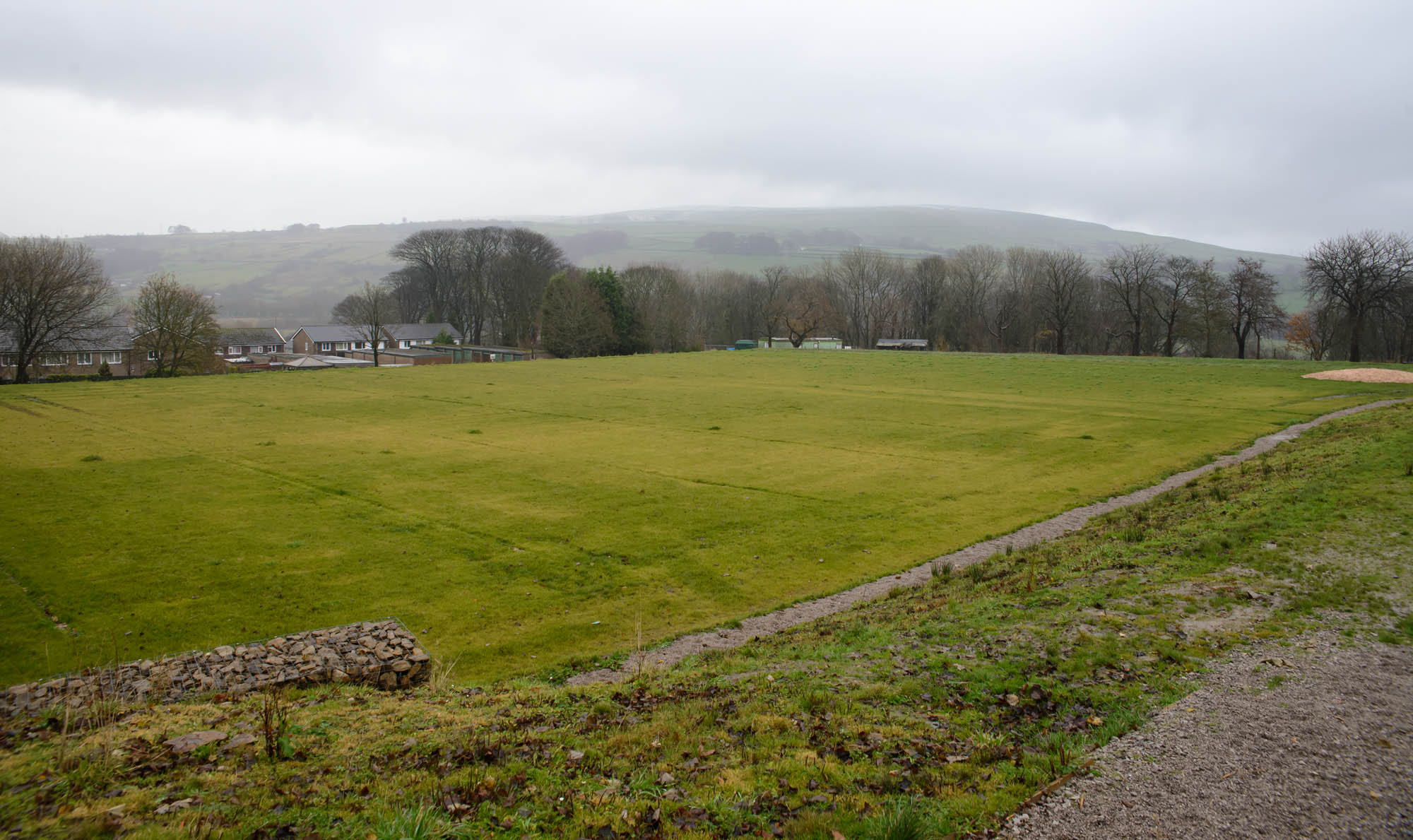 Furness Vale field in 2017