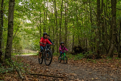 A family cycle on a forest trail