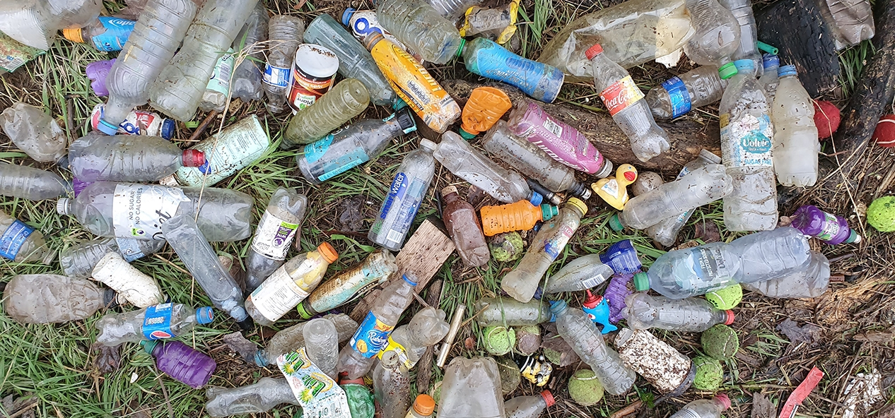Litter in a forest - photo credit: Trach Free Trails